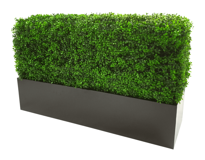 black_100cm_planter_and_hedge_1.png