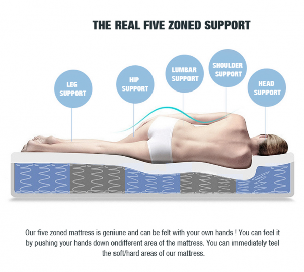 five_zoned-revised_-_copy_3_4-31.png