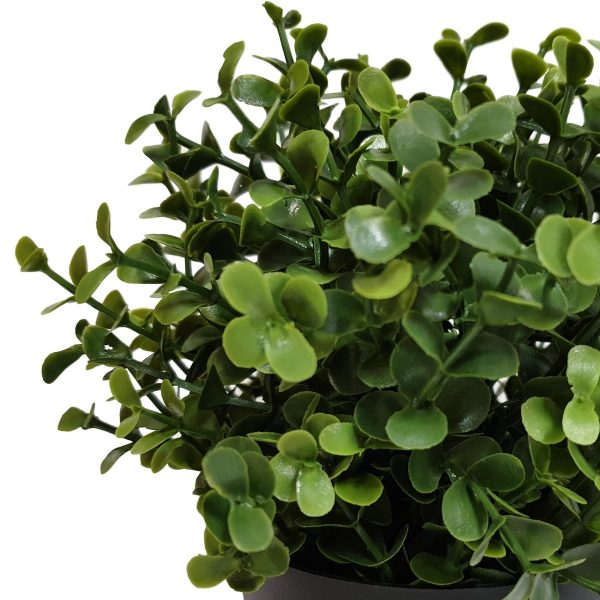 small_artificial_buxus_potted_plant.jpg