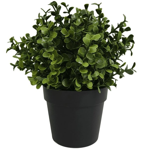 small_potted_artificial_buxus_plant_1_1_.jpg
