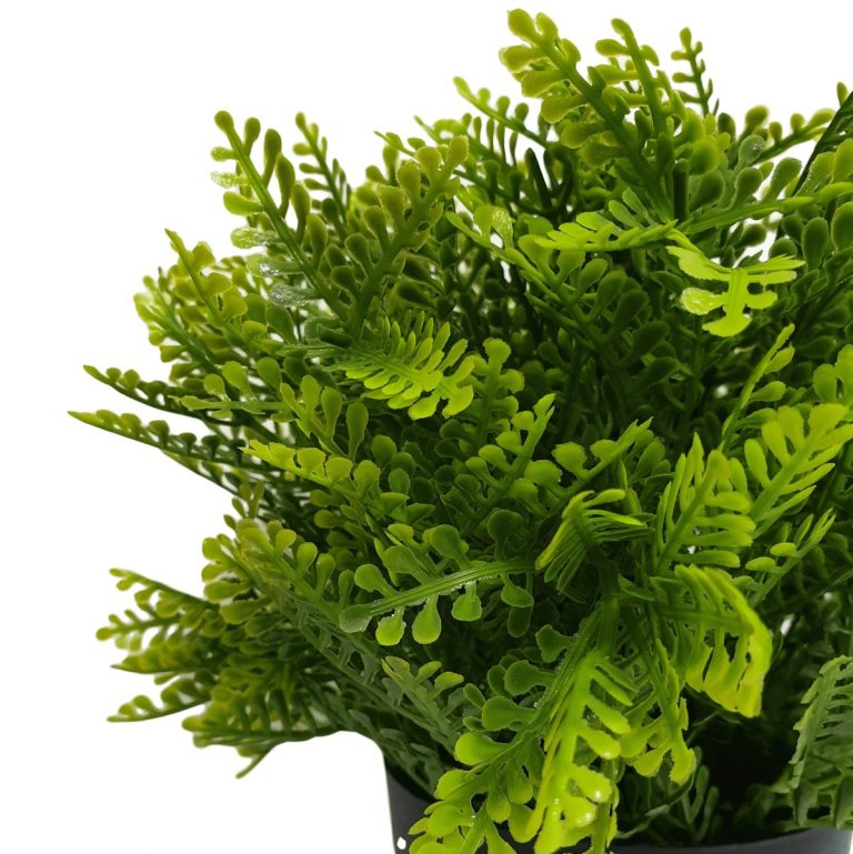 small_potted_artificial_mimosa_fern_plant_1_1_.jpg