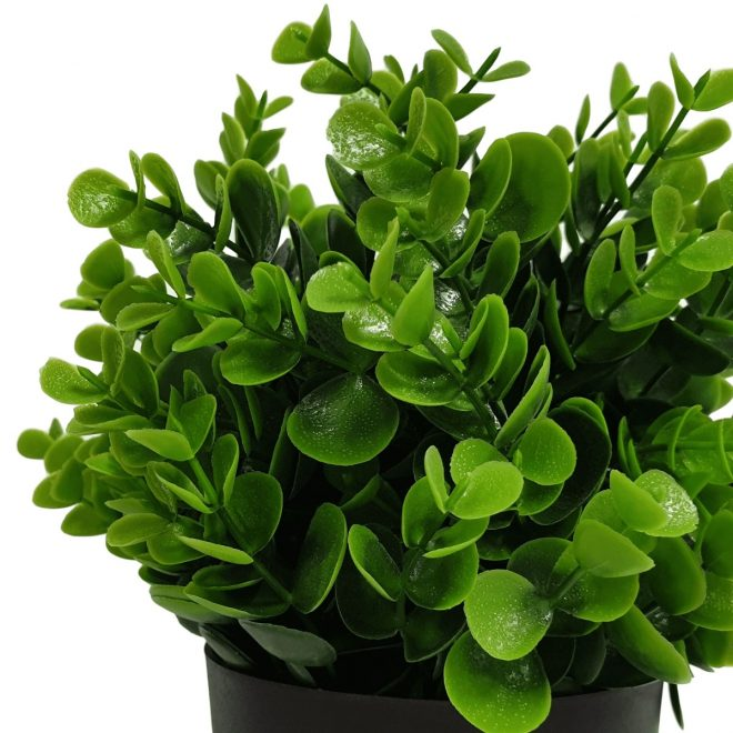 small_potted_artificial_pepperomia_plant_leaves_1_1_.jpg