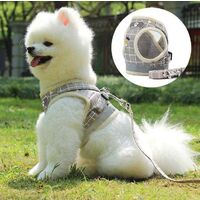 Dogs Harnesses