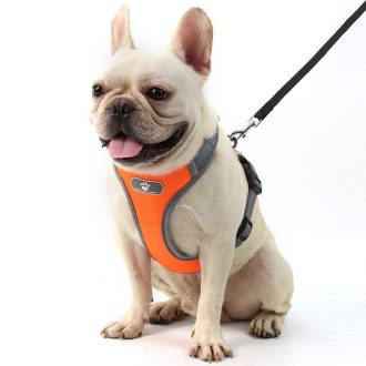dog-harness-vest-adjustable-reflective-breathable-mesh-orange-611524_wmfaineovlyc4jik.jpg