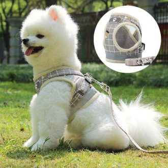 dogs-harnesses-vest-puppy-chest-strap-pug-and-leash-set-528568_ibo4vblydhhxbrby.jpg
